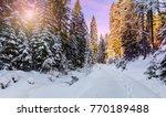 wonderful wintry landscape.... | Shutterstock . vector #770189488