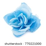 Blue Fabric Flower Isolated On...