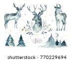 watercolor closeup portrait of... | Shutterstock . vector #770229694