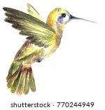 watercolor paintied flying... | Shutterstock . vector #770244949