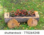 flowerbed in a trunk of the tree | Shutterstock . vector #770264248