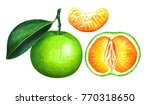 Green Tangerines Isolated On...