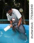 manaus  september 5  2006.... | Shutterstock . vector #770364340