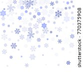 snowflake macro vector