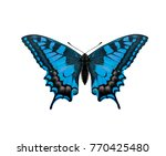 blue butterfly isolated on a... | Shutterstock . vector #770425480
