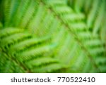 abstract defocused view of the... | Shutterstock . vector #770522410