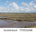 wildlife refuge on salt marshes ... | Shutterstock . vector #770531068
