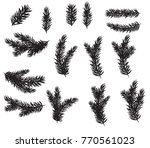 collection set of realistic fir ... | Shutterstock .eps vector #770561023