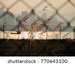 metal net backgrounds grass ... | Shutterstock . vector #770643100