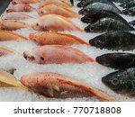 ruby fish   fish on ice at... | Shutterstock . vector #770718808