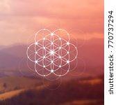 hipster scientific illustration ...   Shutterstock .eps vector #770737294