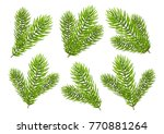 set of christmas tree branches... | Shutterstock .eps vector #770881264