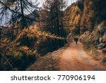 hikers walk back home after an...   Shutterstock . vector #770906194