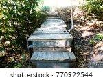 wooden pathway in the... | Shutterstock . vector #770922544