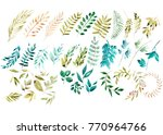 watercolor floral set. colorful ... | Shutterstock . vector #770964766