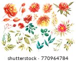 watercolor floral set. colorful ... | Shutterstock . vector #770964784