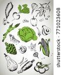 healthy food frame vector... | Shutterstock .eps vector #771023608
