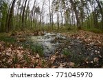 landscape with trees gnawed by...   Shutterstock . vector #771045970