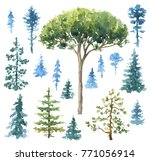 watercolor painting. hand drawn ...   Shutterstock . vector #771056914