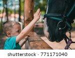 cute little caucasian boy...   Shutterstock . vector #771171040