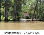 house on stilts in the parana... | Shutterstock . vector #771248428