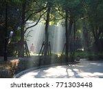 the sunlight beam through the... | Shutterstock . vector #771303448