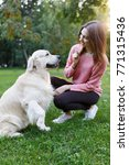 Stock photo picture of woman with dog on lawn in summer park 771315436