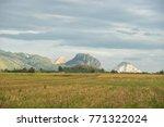 the beautiful scenery of... | Shutterstock . vector #771322024