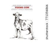 young cow  whole body... | Shutterstock .eps vector #771356866