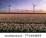 offshore windmill farm in the... | Shutterstock . vector #771444859