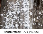 texture of a tree and boards... | Shutterstock . vector #771448723