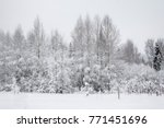 winter road and forest in the... | Shutterstock . vector #771451696