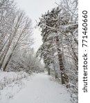 Small photo of winter landscape. Karelia, Russia
