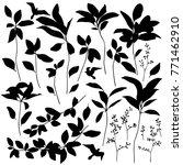 leaf illustration object. | Shutterstock .eps vector #771462910