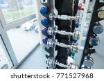 stand with dumbbells in gym | Shutterstock . vector #771527968