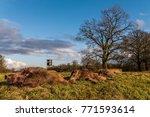 killed wild boar after a hunt  | Shutterstock . vector #771593614