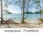 beautiful beach scenery with... | Shutterstock . vector #771698410