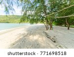 beautiful beach scenery with... | Shutterstock . vector #771698518