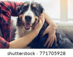 young person with dog at home... | Shutterstock . vector #771705928