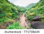 beautiful nature with large... | Shutterstock . vector #771738634