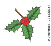 hand drawn colored holly or... | Shutterstock .eps vector #771830164