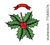 hand drawn colored holly or...   Shutterstock .eps vector #771830176