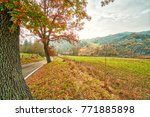 country asphalted road running... | Shutterstock . vector #771885898