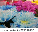bunch of colorful flowers | Shutterstock . vector #771918958