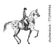 horseback rider man and dapple...   Shutterstock . vector #771994966