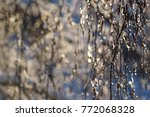 winter branches background | Shutterstock . vector #772068328