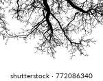 Realistic Oak Tree Silhouette...