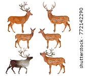 collection of deer isolated on... | Shutterstock .eps vector #772142290