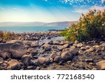 Seashore Near Ein Eyov...
