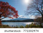 fuji mountain and red tree in...   Shutterstock . vector #772202974